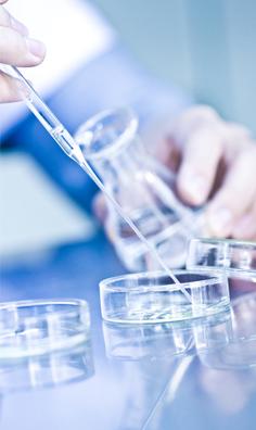 Microbiotic strains quality criteria